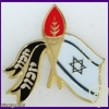 Remember Badge To The Family Of The IDF Fallen Soliders