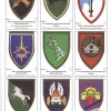 New catalog of Israeli Army shoulder badges img46001
