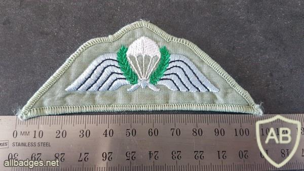 NZ Parachute wing img46174