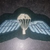 Rhodesian Para Wing