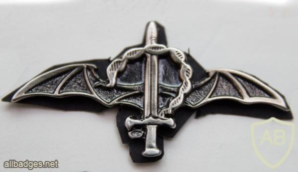 לוחם סטינגר - סוללת גור ישאג img46681