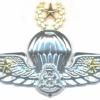 MALAYSIA Police Master Freefall Parachute wings