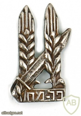 Two Pins – Palmach – War of Independence img47973