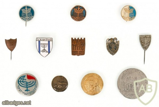 Collection of Pins – Betar img47965
