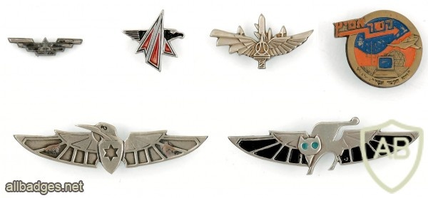 Collection of Pins and Cloth Badges – Air Force img48004