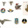 Collection of Pins and Cloth Badges – Air Force img48006