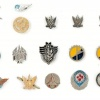 Collection of Pins and Cloth Badges – Air Force img48005