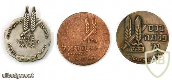 Collection of Pins – Haganah and Palmach img47978