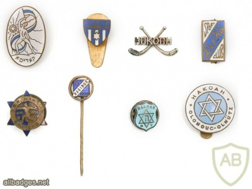 "Collection of Pins – Sports Organizations and Jewish Youth Movements – ""HeChalutz"", ""HaKoah"", ""Haggibor"", and more img48024"