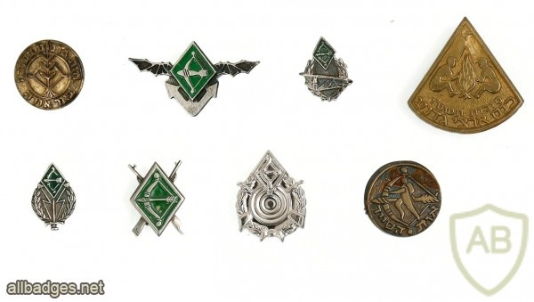 Collection of GADNA Pins img48018