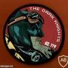 טייסת העטלף- טייסת 119