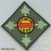 4th Infantry Division LRRP patch