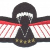 NETHERLANDS Army DT 2000 Parachutist Brevet D HAHO/HALO Oxygen wings, full color