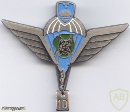 SLOVENIA 1st Special Brigade MORiS parachute wings, Silver, 10 jumps img48712