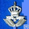 JORDAN AIR FORCE CAP BADGE img48909