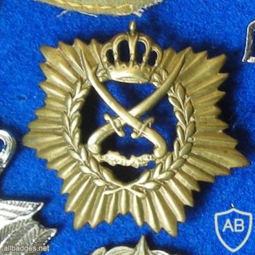 JORDANIAN OLD CAP BADGE img48910