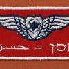 כנפי טייס של טייס מדמה אויב בשם חסן טייסת- 115 - ביום אויב הטייסת האדומה