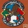 AERONAUTICA MILIITARE SPRING FLAG