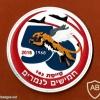 יובל ה- 50 לטייסת הנמר המעופף - טייסת- 102