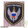 National Guard Aviation units patch