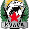 Kurdish Veterans and Volunteers Association (KVAVA) - Service Pin img52631