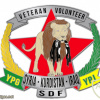 Service Badge - Foreign volunteers and veterans of the YPG & YPJ