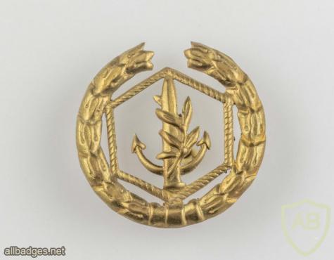 Navy officer breast badge- 1948 Type- 2 img52897