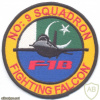 PAKISTAN - Pakistani Air Force - No. 9 Squadron sleeve patch