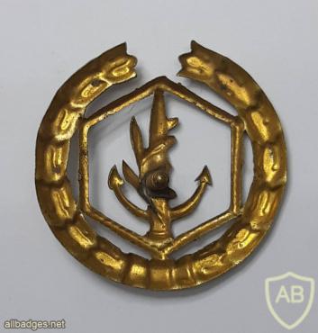 Navy officer breast badge- 1948 Type- 2 img53698