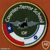אימון משותף עם צבא צ'ילה בבית ספר ללוחמה בטרור