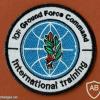 מפקדת זרוע היבשה ענף אימון בינלאומי