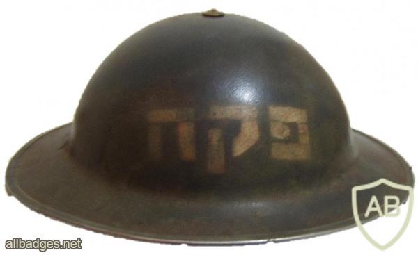 פקח img53877