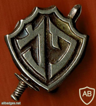 פמ יחידה מיוחדת אולי פלוגה מיוחדת או פיקוד מיוחד img56238