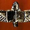 סמל השוחר - מוזהב
