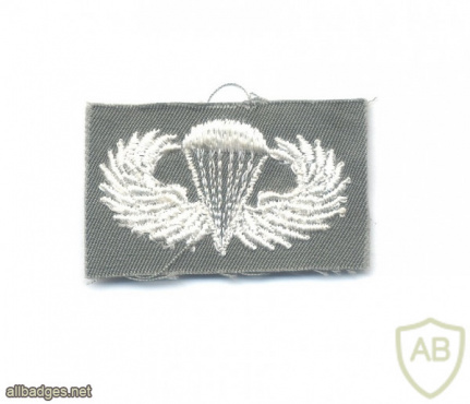 US Army Basic Parachutist wings, embroidered, white on olive green img57477