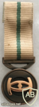South Africa - Intelligence Services Loyal Service Bronze Medal (Mess Dress) img57789