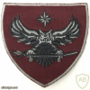 Estonia Military Intelligence Patch