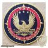 U.S. FBI Directorate of Intelligence Patch