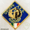 Italy - Military - Interforce Intelligence Center - A.E.S. Group Pin