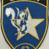 Switzerland - Air Force - Intelligence Section 6, 62 Coy Patch