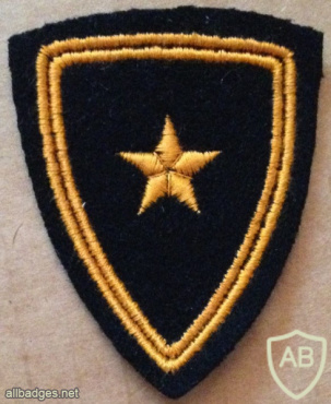 Switzerland - Army - Intelligence Shoulder Patch img58873