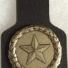 Switzerland - Army - Intelligence Occupation Pocket Badge img58885