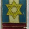 הבריגדה היהודית - גדוד- 2
