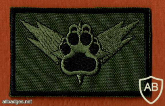 """מלא""""ר ( מלך האריות ) ענף גדוד- 330 חטיבת בני אור- 460 img59755"""