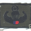 PHILIPPINES Army Parachutist jump wings, subdued, Master