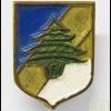 חטיבת הארזים - החטיבה המערבית צבא דרום לבנון img62619