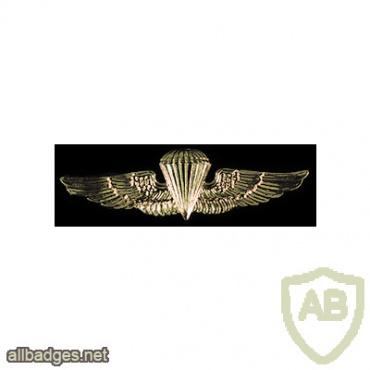 Navy and Marine Corps Parachutist Wings img62622