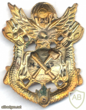SOUTH KOREA Army Special Warfare Command (ROK-SWC) beret badge img62627